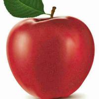 红苹果布艺生活馆